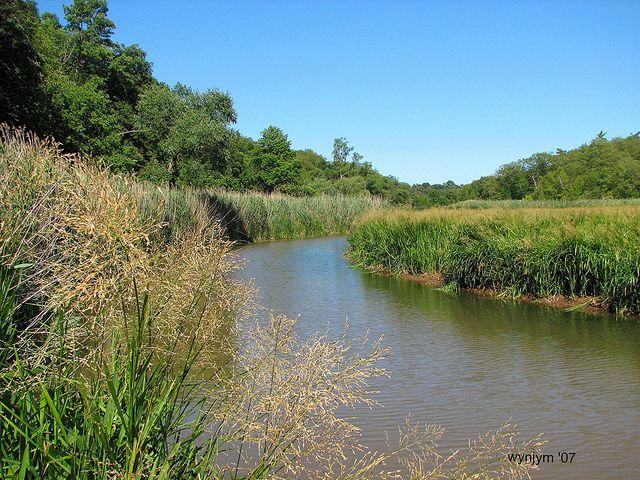 Grindstone creek, Hamilton, Ontario