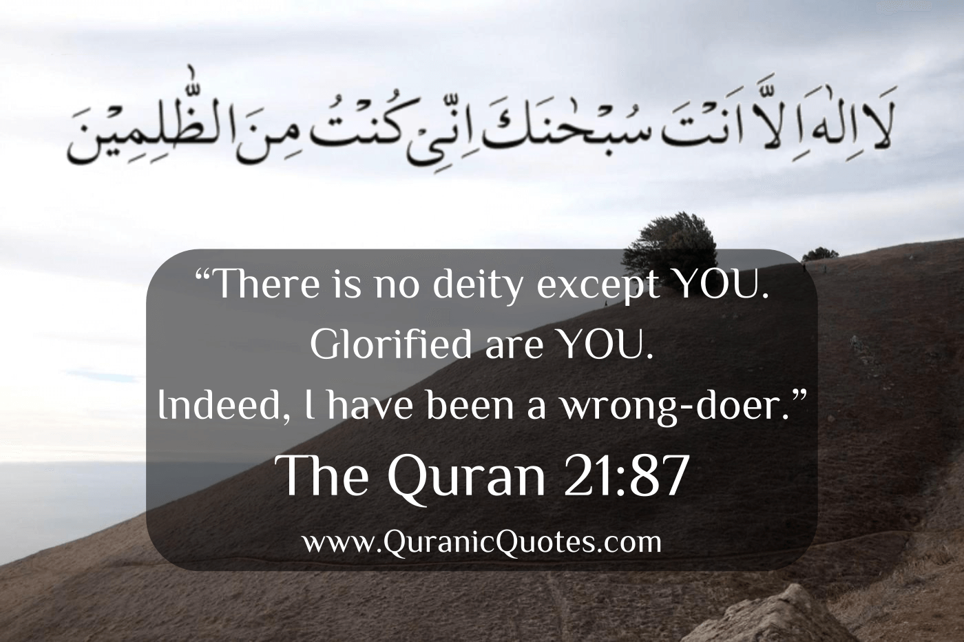 Quotes Quran 291 Best Quranic Quotes Images On Pinterest  Quran Quotes Allah