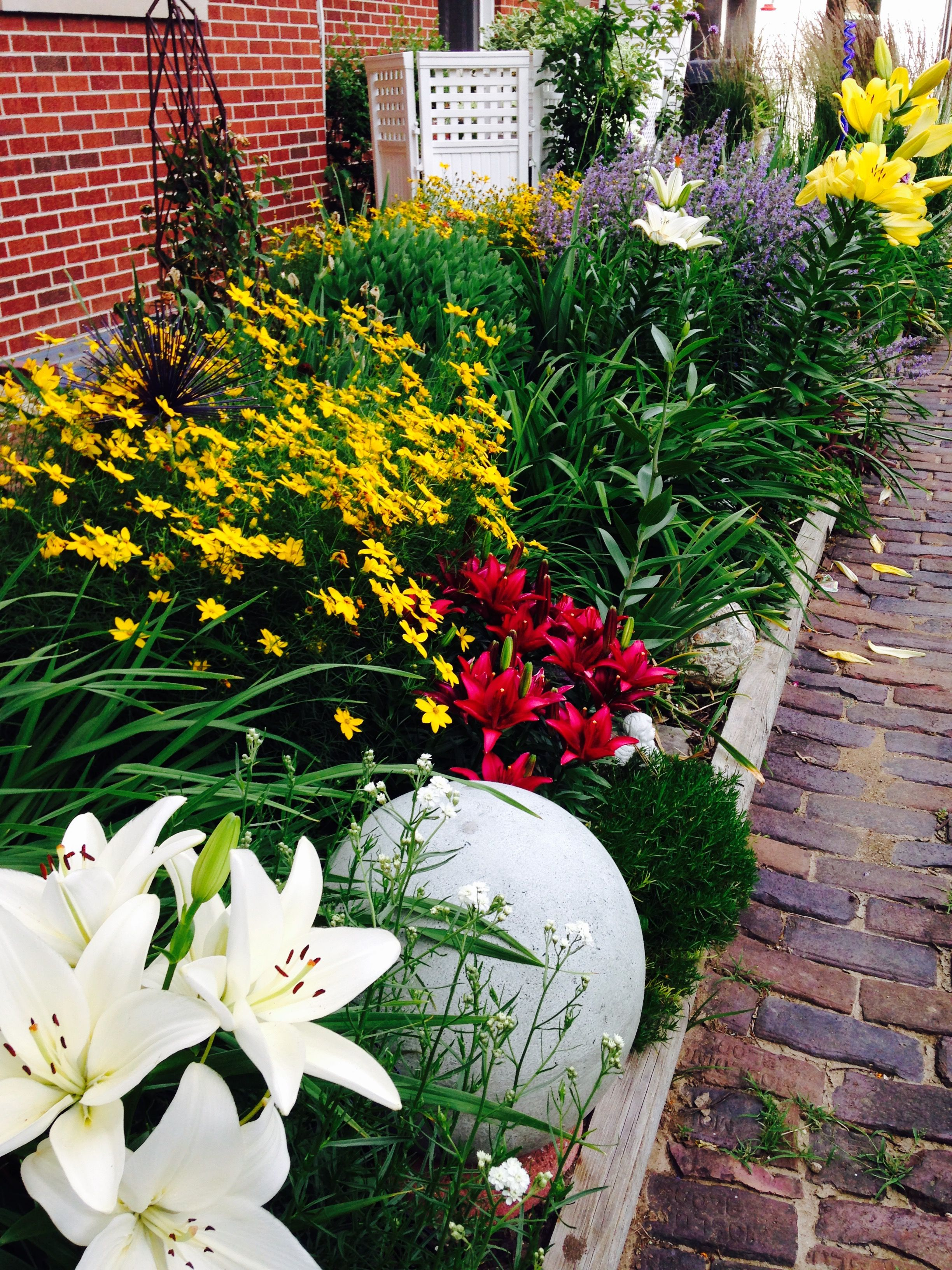 sun loving perennials on south side of house - Flower Garden Ideas Illinois