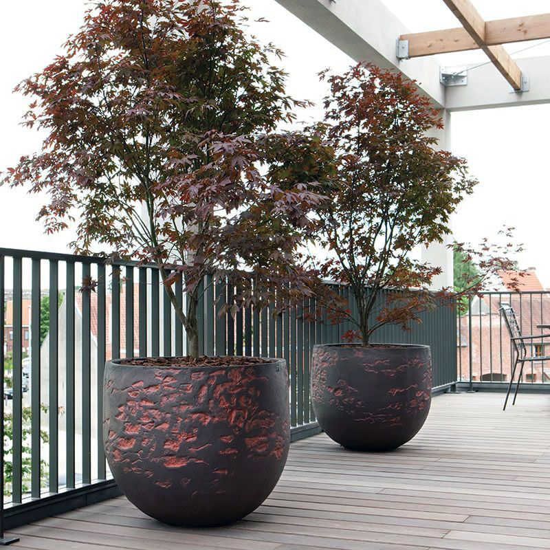 Ways Large Outdoor Planters Can Enrich Your Structure S 640 x 480