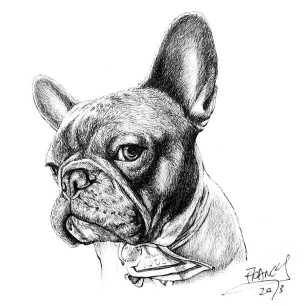 Art drawing - Google-søgning Tiere Hund portraits