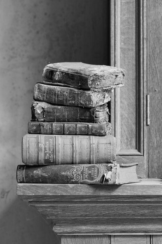 Religieuze symboliek kon je vaak terugvinden in oude boeken die heel wat jaren terug geschreven waren. Robert was er een krak in om die te ontcijferen. Boeken staan in dit boek centraal omdat het via die boeken was dat ze het geheim van the Da Vinci Code ontcijfert hebben.