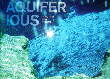 aquiferious book - Google Search