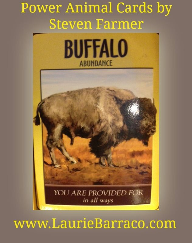 Card of the Day ~ Buffalo ~ Abundance. Call upon the spirit of the Buffalo in your prayers and meditations to help you with: provision, gratitude, abundance, consistency, strength, stability, blessings and prosperity. When the Buffalo reveals itself in a dream, meditation or simply through signs throughout your life, it is a powerful and positive omen.
