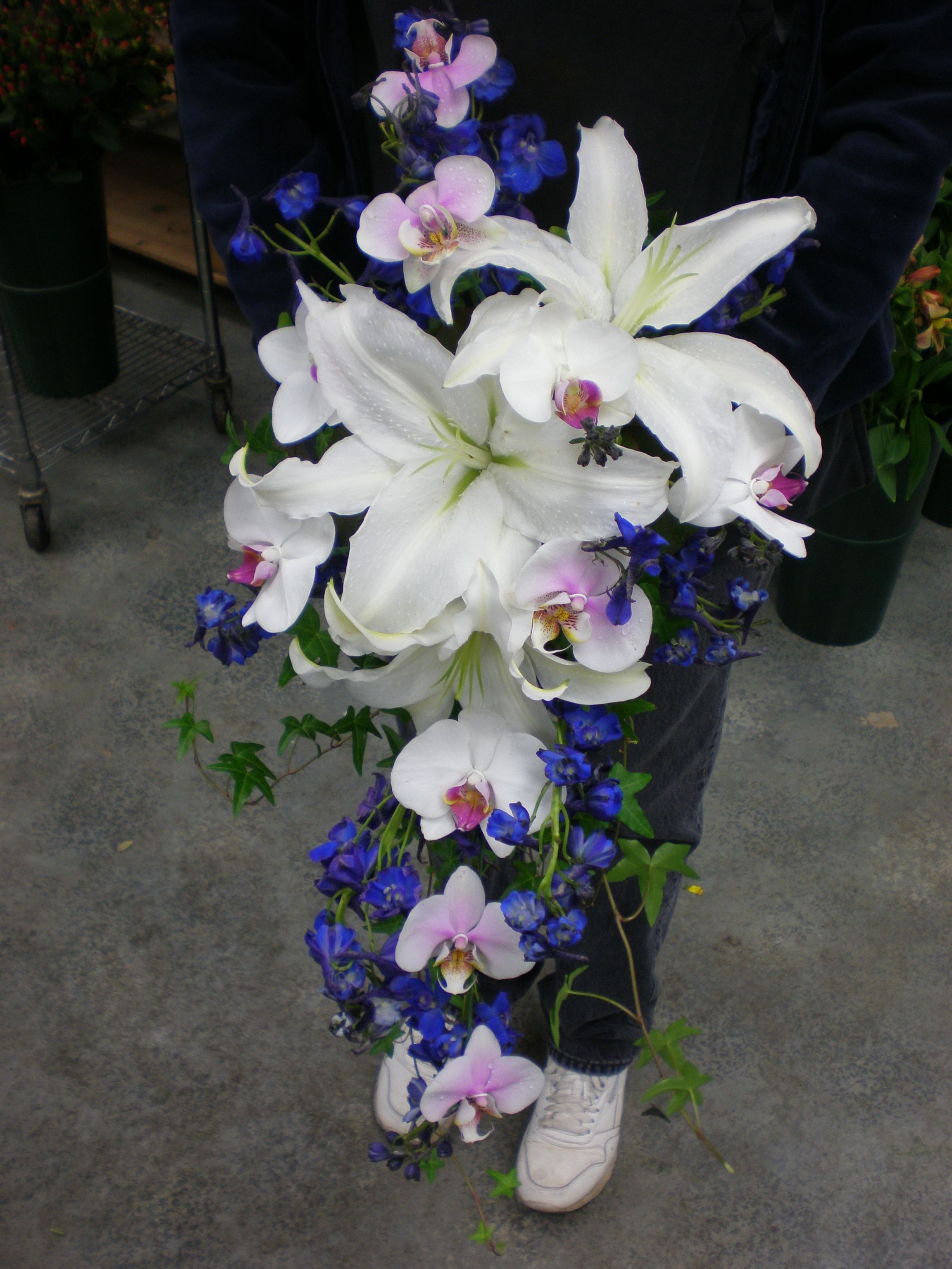 White lilies orchids and delphinium cascade bridal bouquet skyway white lilies orchids and delphinium cascade bridal bouquet izmirmasajfo