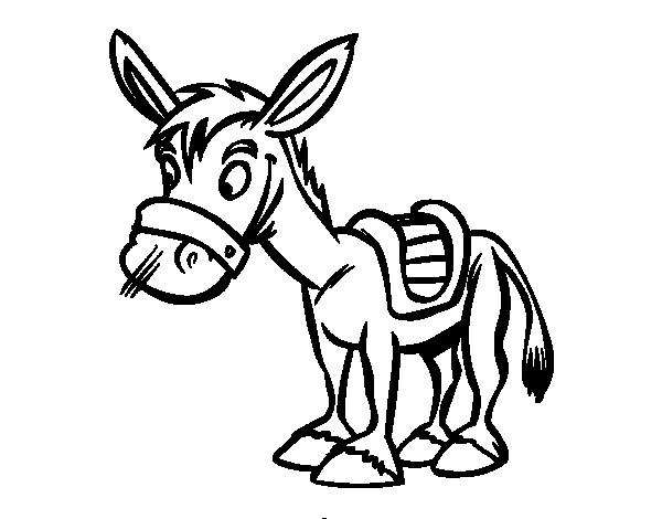 Dibujo de Burro de granja para colorear  Dibujos de Animales