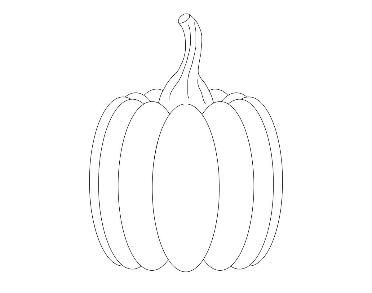Pumpkin Drawn By Alexis K For March Of The Blanketeers