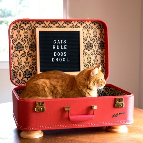 Upcycled Vintage Suitcase Pet Bed, Handmade Suitcase Cat Bed ...