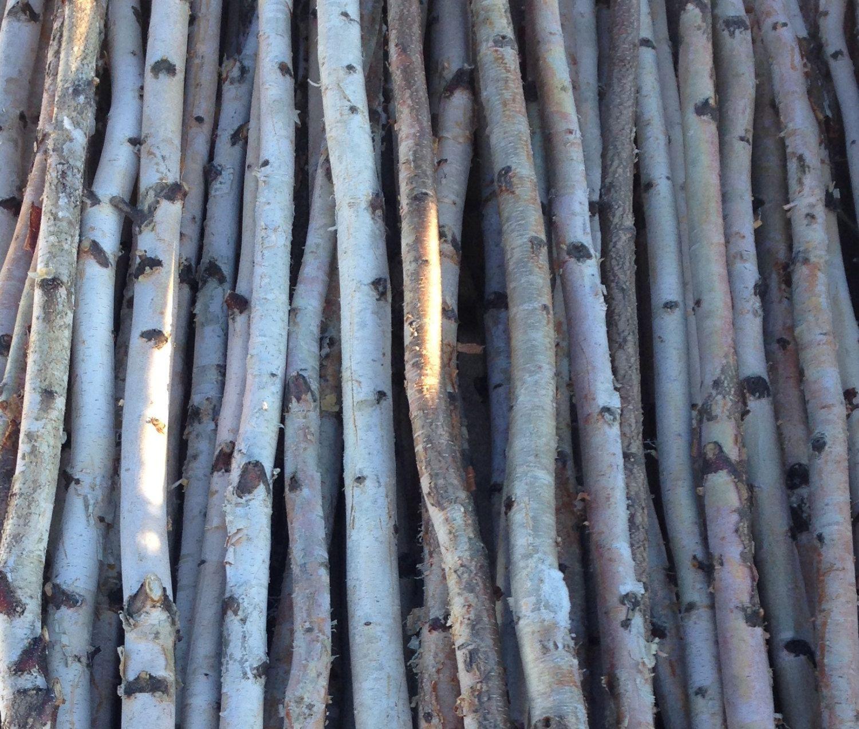 4 Thin White Birch Poles 6/'