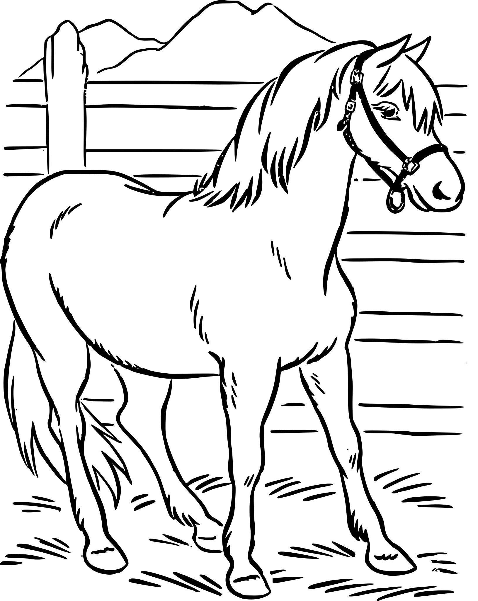 Coloriage Chevaux A Imprimer Coloriage Cheval 30 Brawler Decoloriage De Cheval A Imprimer Dieren Kleurplaten Paard Tekeningen Borduren Dieren