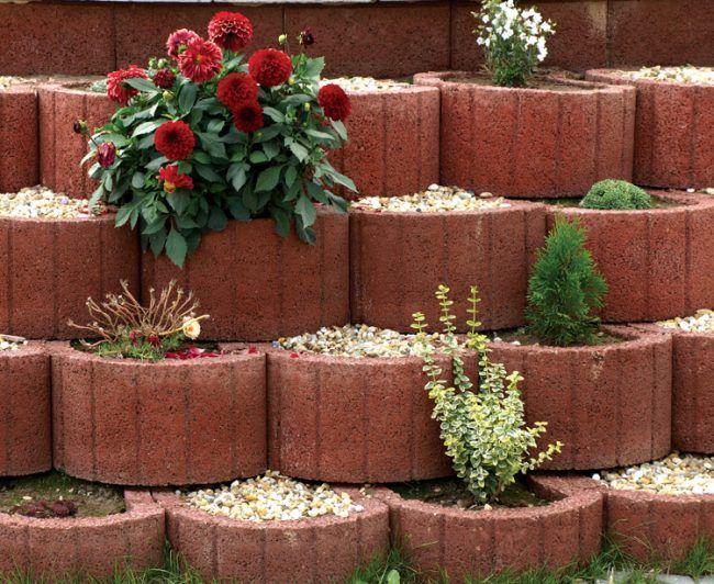 Pflanzringe Beton pflanzringe beton setzen gartengestaltung rot kies chrysanthemen rit
