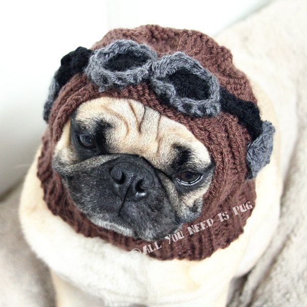 Dog Hat Aviator Hat With Goggles The Original Pug Hat 26 00