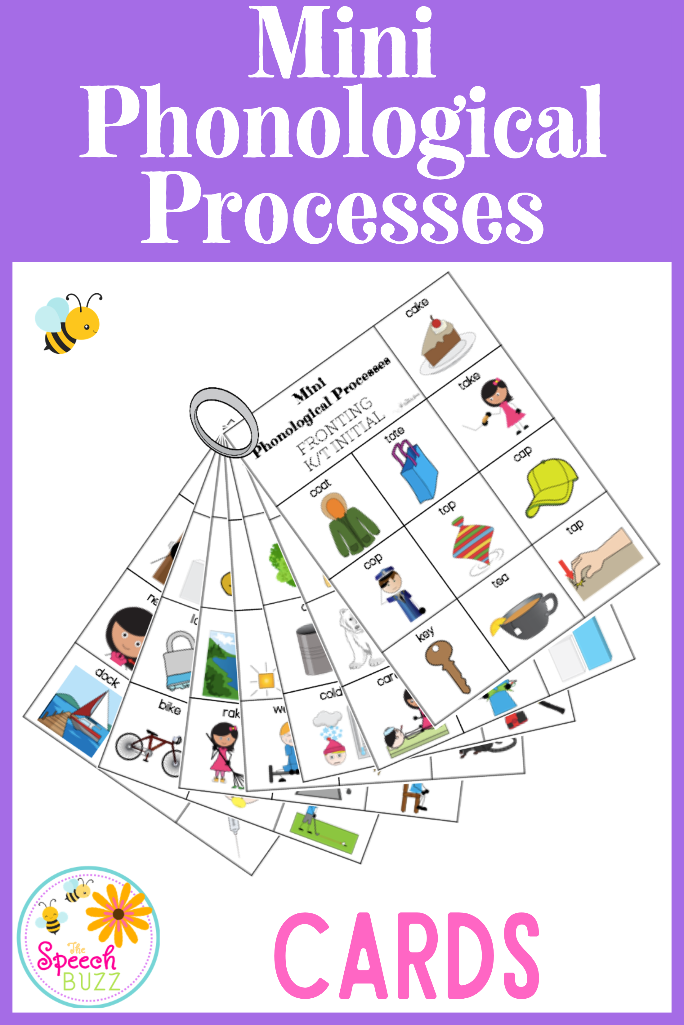 Phonological Processes Minimal Pairs Mini Cards