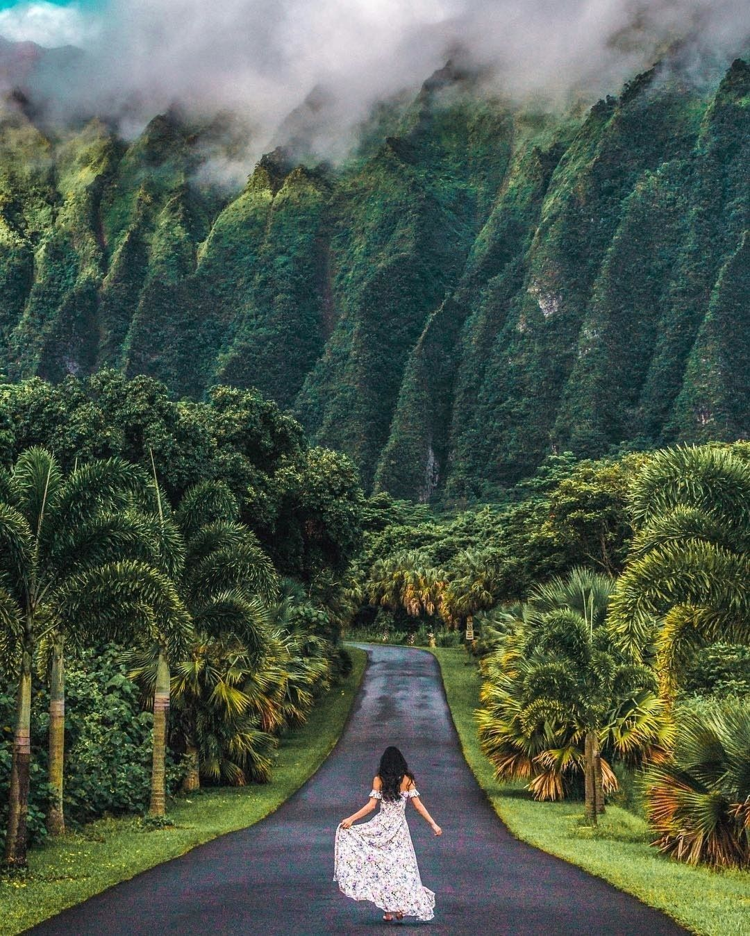 Now Discovering the Ho'omaluhia Botanical Garden in Oahu