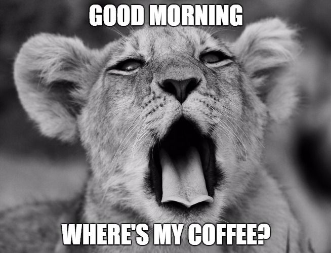 07d7d7a86edecde6fb5f1258150c44eb 31 funny good morning memes for each day of the month morning,Wheres My Coffee Meme