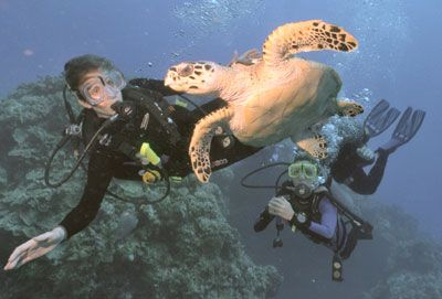 and then scuba diving in Cozumel!! This is me and Kyle's dream, to go diving together in Cozumel..