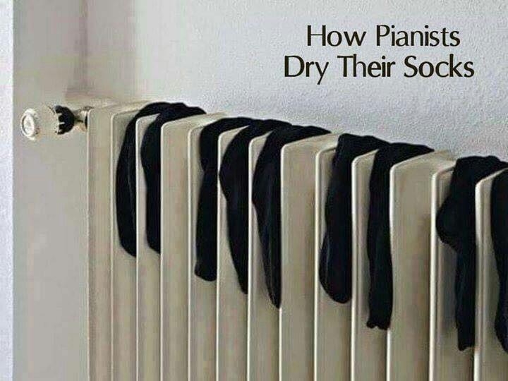 Pin By Lynn On Haha O Classical Music Humor Music Humor Pianist