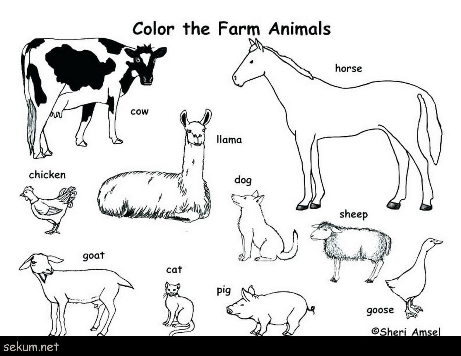 25 Amazing Picture Of Printable Animal Coloring Pages Albanysinsanity Com Farm Animal Coloring Pages Farm Coloring Pages Zoo Animal Coloring Pages