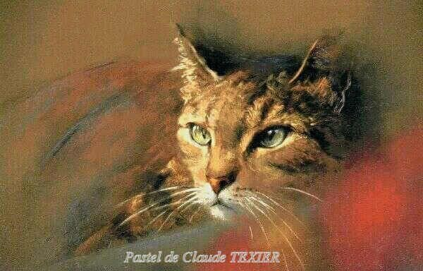 Claude texier pastels claude texier pinterest chats peinture dessin et pastel - Tuto peinture abstraite contemporaine ...