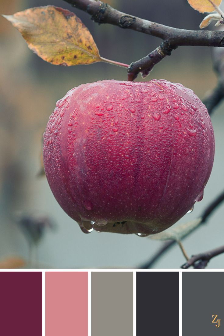 Color Palette #894 | color palette | Pinterest | Color combos, Color ...