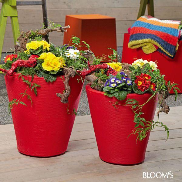 Frühlingsblumen In Kübel Und Schale | Ostern Frühling | Pinterest ... Balkon Im Fruhling Blumen