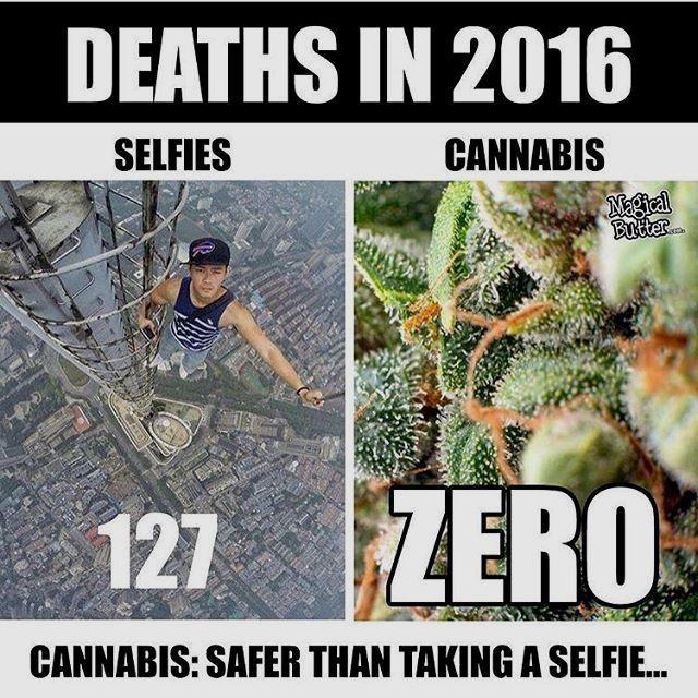 Pin on dude #420 #memes