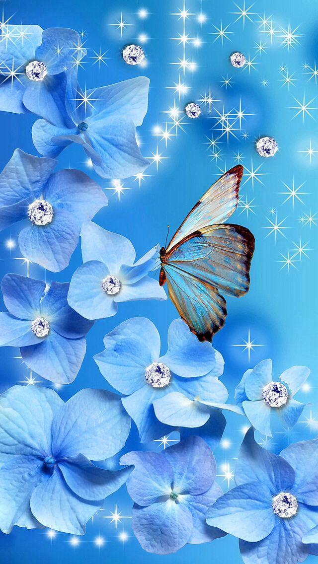 Blue Butterfly Butterfly wallpaper, Beautiful