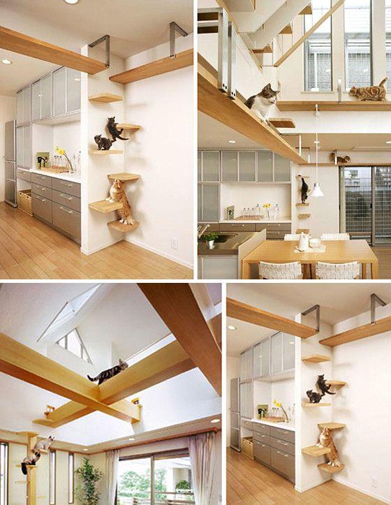 ネコちゃんの海外のおしゃれなペットハウス インテリアのアイデア32 の画像 賃貸マンションで海外インテリア風を目指すdiy ハンドメイドブログ Paulballe ポールボール ハウス インテリア ペット