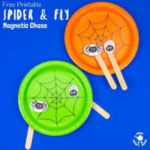 Magnetic Spider and Fly Toy