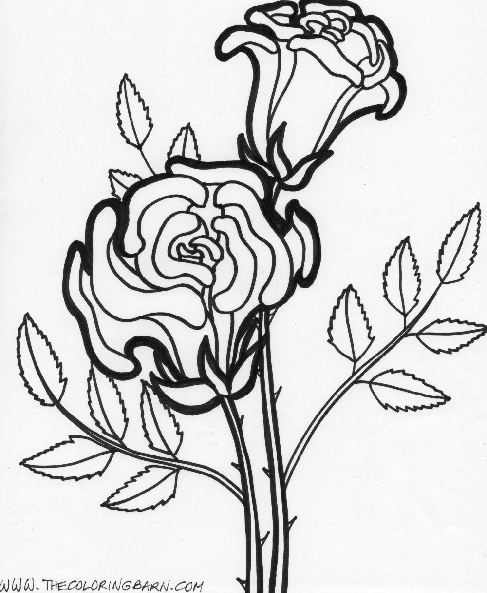 flower Page Printable Coloring Sheets | Flower printable coloring ...