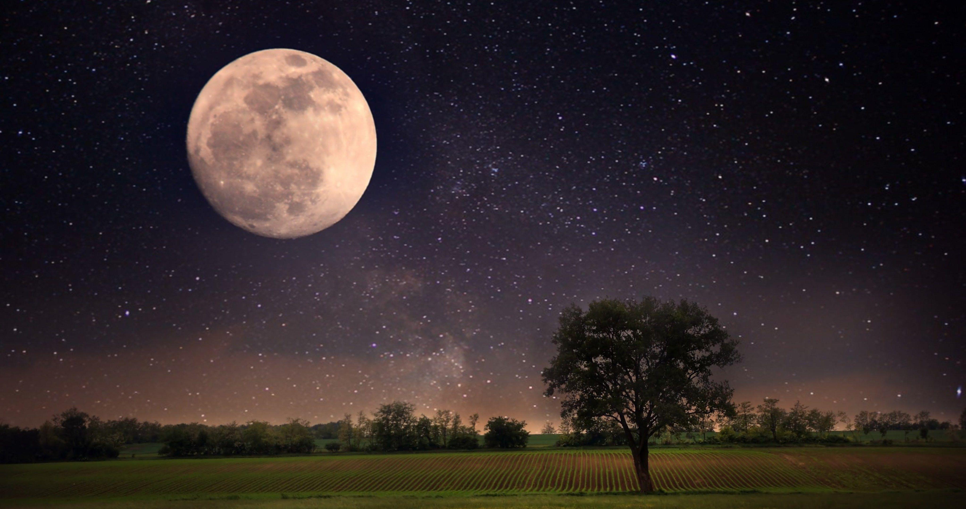 Moon Night Scene 4k Ultra Hd Wallpaper Moon Night Scene Funny Pictures