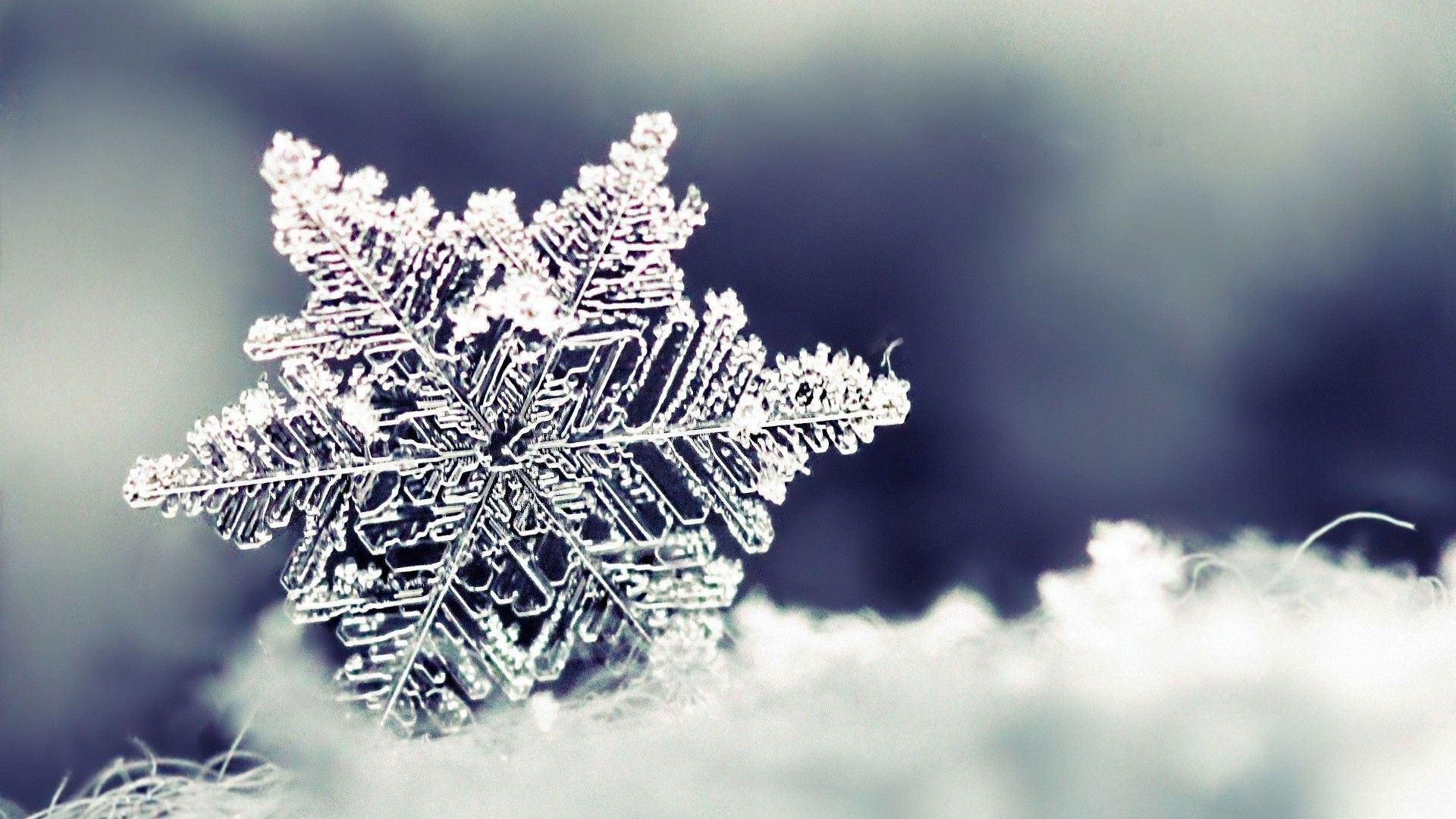 Snowflake HD desktop wallpaper Widescreen High