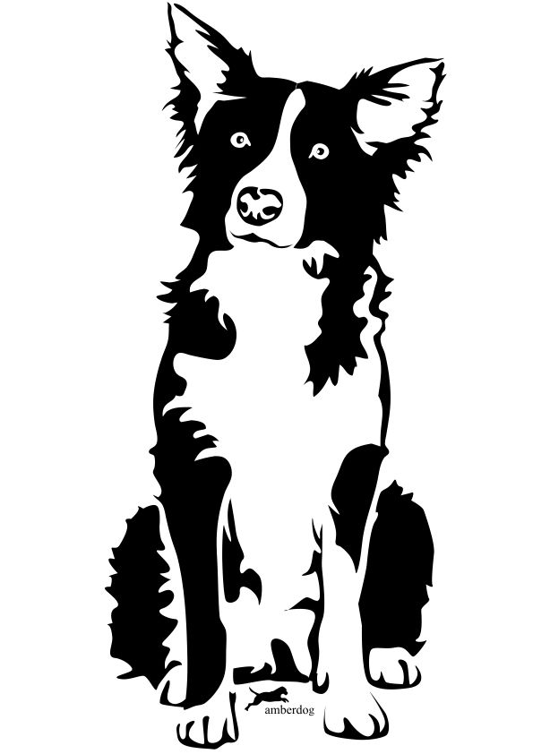 Pin Border Collie Tattoo Picture On Pinterest Animal Stencil Dog Stencil Dog Drawing