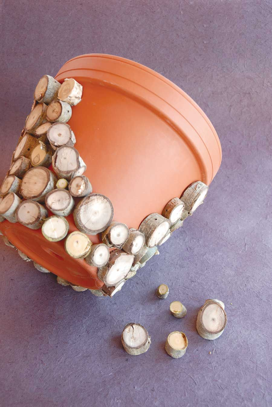Spruce up a plain terracotta pot by covering with tree branch clippings.