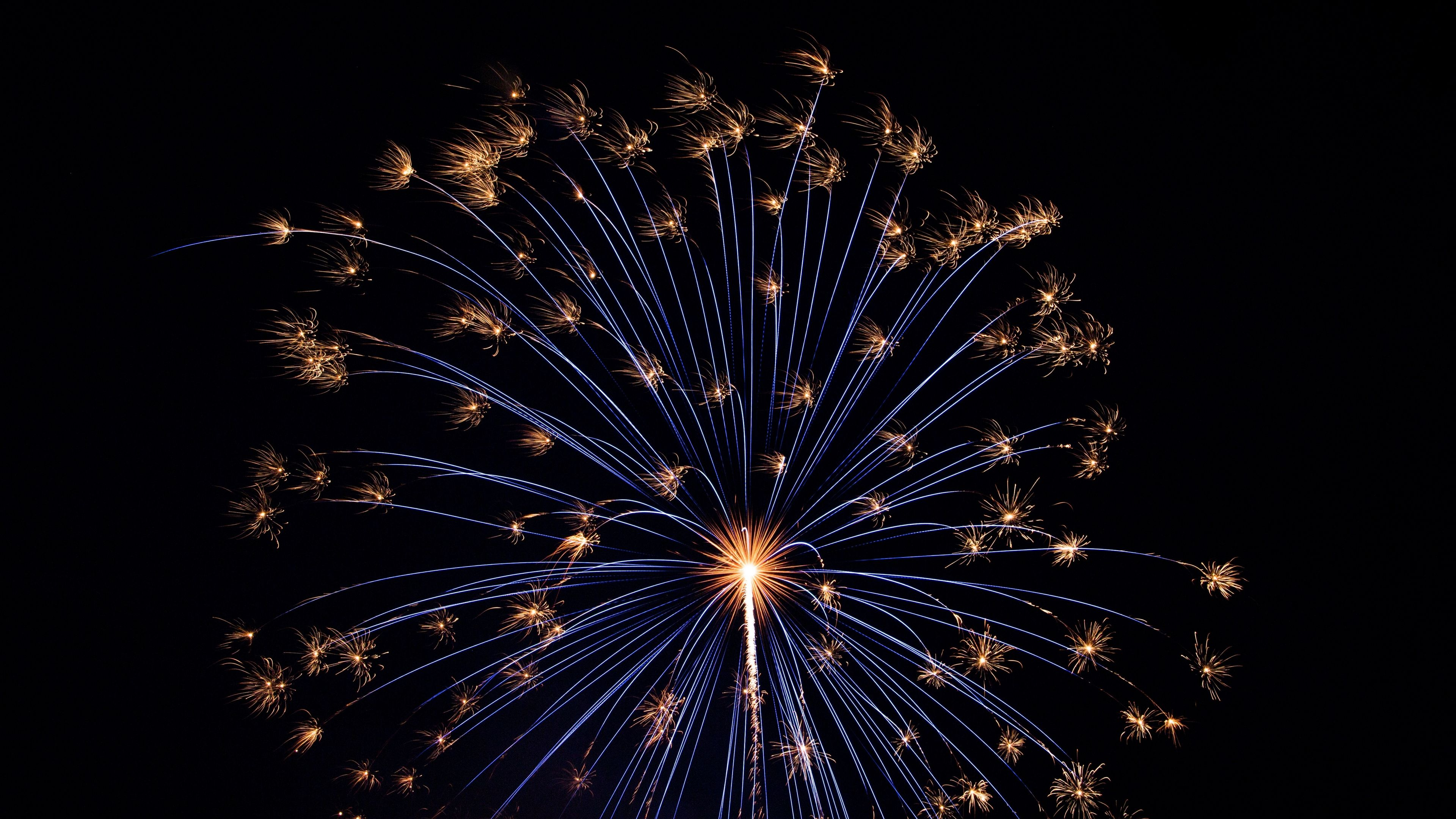Salute Fireworks Holiday 4k Salute Holiday Fireworks Fireworks Wallpaper Beautiful Wallpapers Colorful Wallpaper
