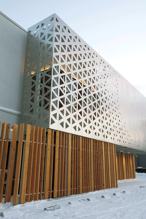 Ichii Renovation - Triangular Parametric Grid - Triangles Triangulation Evolutive Panel