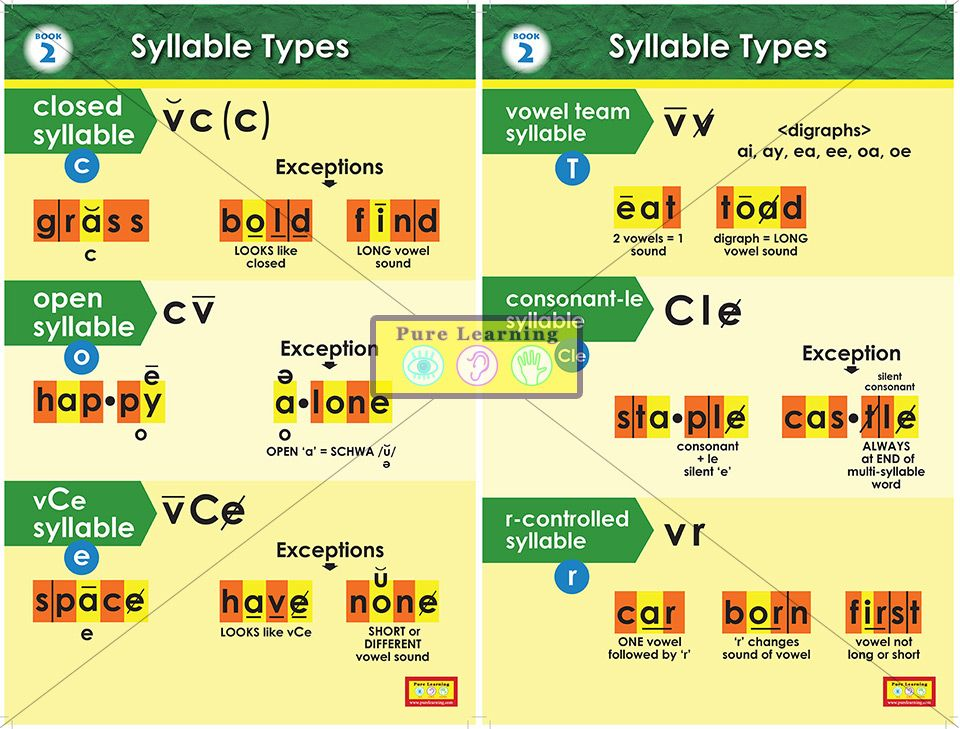 Premise Indicator Words: Book Two Syllable Types Posters