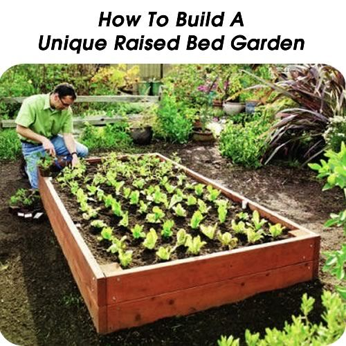 Unique Raised Bed Garden Ideas: How To Build A Unique Raised Bed Garden