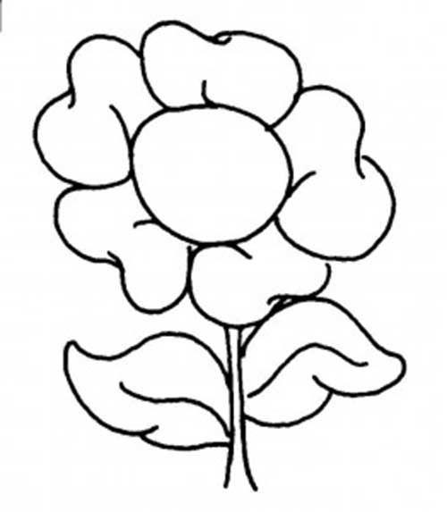 25 Desenhos de Flores para Pintar/Colorir: Imprimir ou