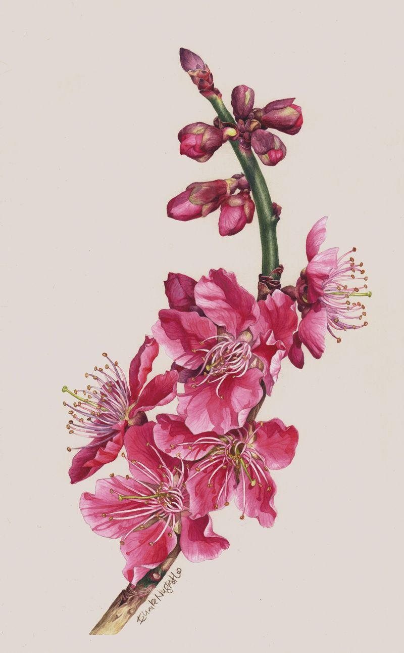 Eunike Nugroho Tips Cherry Blossom The Fear Of Masking Fluid