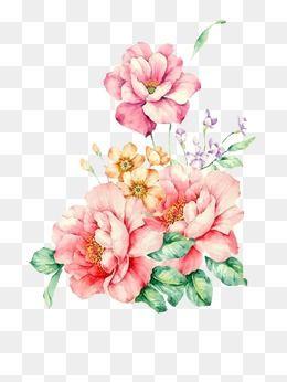 Flowers Clipart Hand Painted Png Transparent Image And Clipart For Free Download Aquarela Floral Pinturas De Flores Vetores Florais