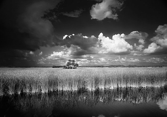 Some would say in the spirit of ansel adams but clyde butcher everglades and his own man with his own style clyde butcher exposed the real florida