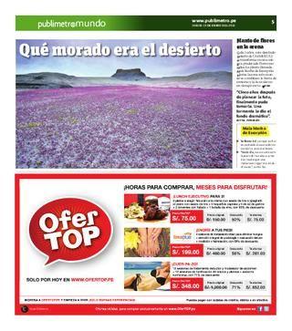 Purple Desert in Utah.  Every five years the Utah desert is transformed into a meadow of purple flowers.
