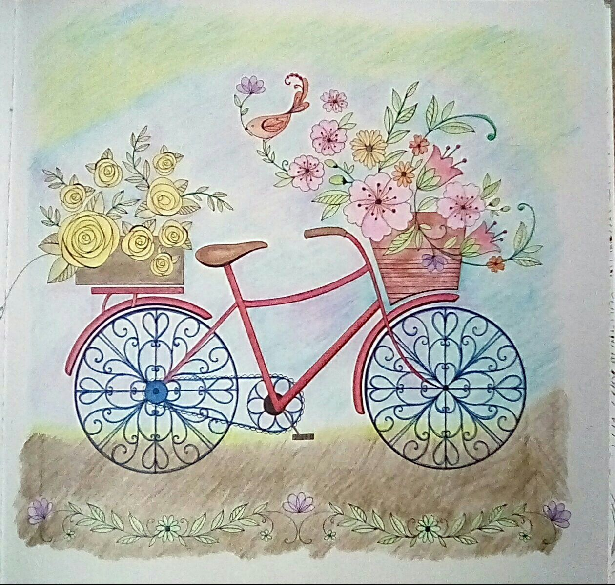 Joyous Blooms To Color Adult Coloring Bicycle Eleri Fowler
