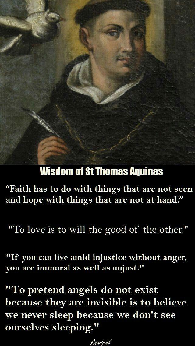 Wisdom of St. Thomas Aquinas | Thomas aquinas quotes, St ...