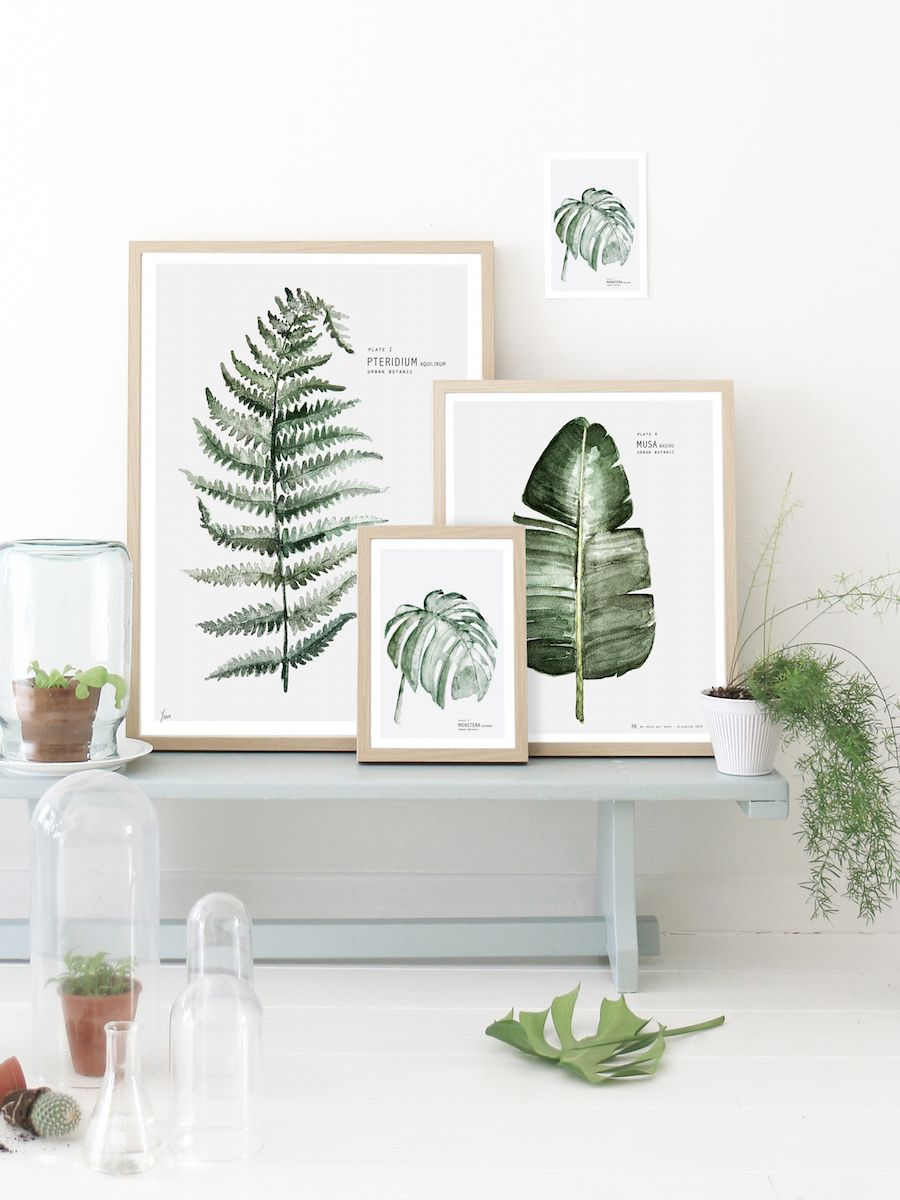 urban botanic | prints we love | Pinterest | Farne, Wanddekoration ...
