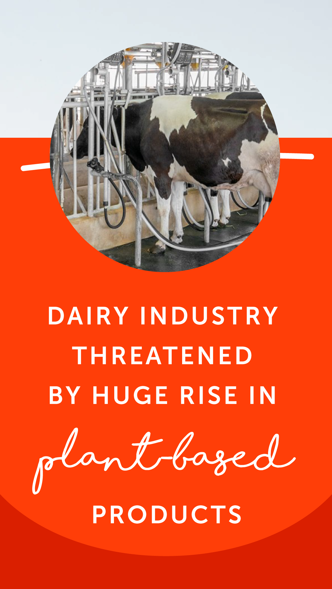 Dairy Industry Threatened by Huge Rise in PlantBased