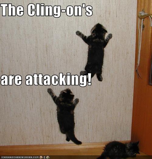 cling-ons. @mark olson @angela olson