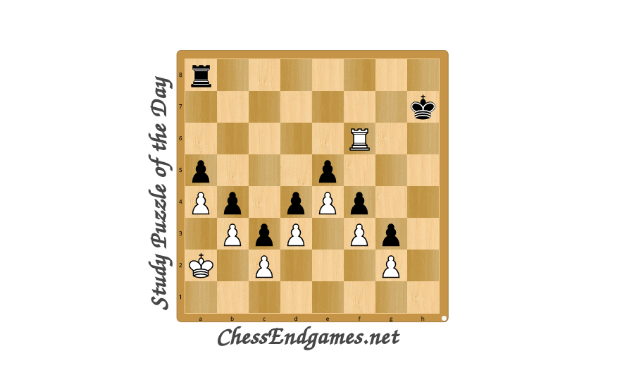 Study Puzzle of the Day 28/07/2020 * Chess Endgames