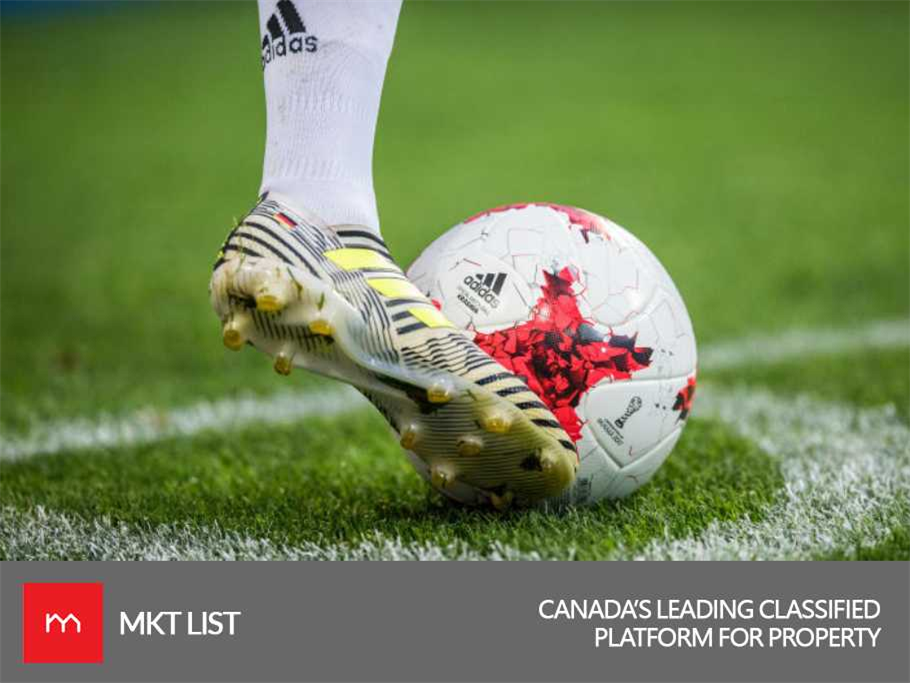 Sports Update The Fifa World Cup Schedule And Time For Canada Fifa World Cup World Cup Schedule World Cup